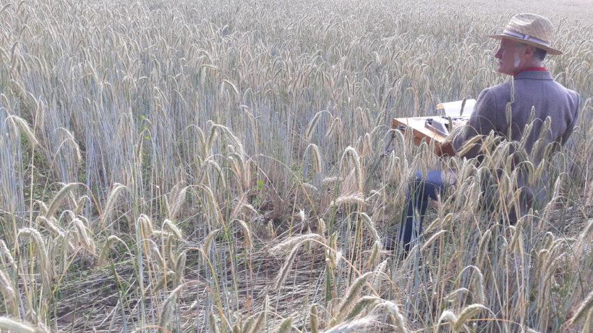 Autor Gerhard Richter beschreibt beim fieldwriting in einem Roggenfeld Schönheit und Schrecken einer Monokultur